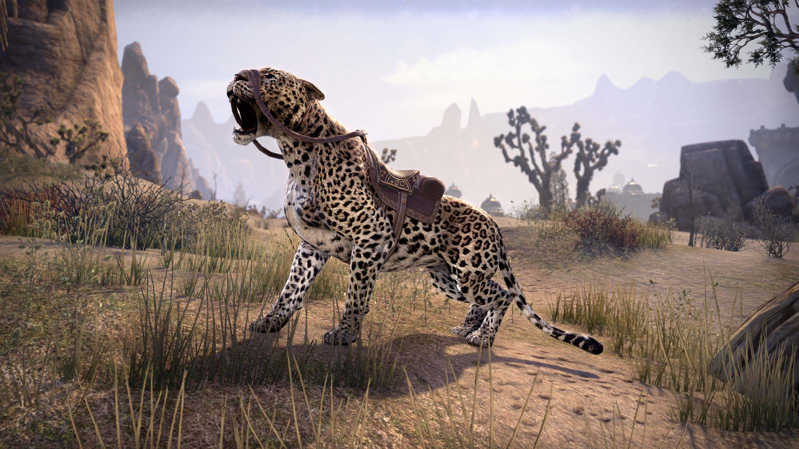 sencheleopard